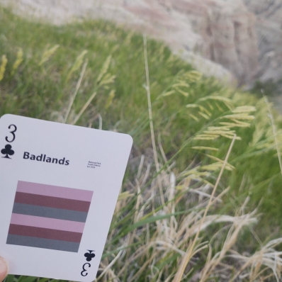 playing card in front of tall grass at Badlands National Park