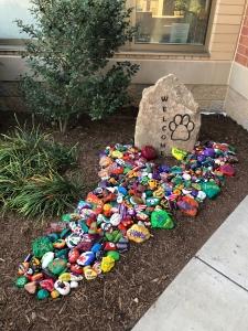 photo of rocks